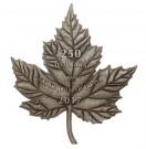 Maple Leaf Forever 1 kilo Ag - tvar javorového listu